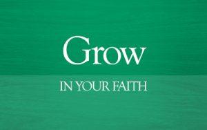 grow_web_btn